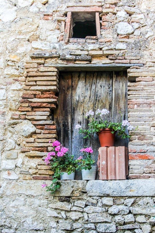 Fleurs dans le vieil hublot photographie stock
