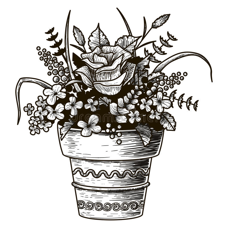 Fleurs dans un bac Illustration de croquis Vecteur d'isolement illustration stock