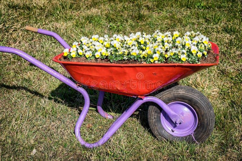 Fleurs dans un vieux chariot photos libres de droits