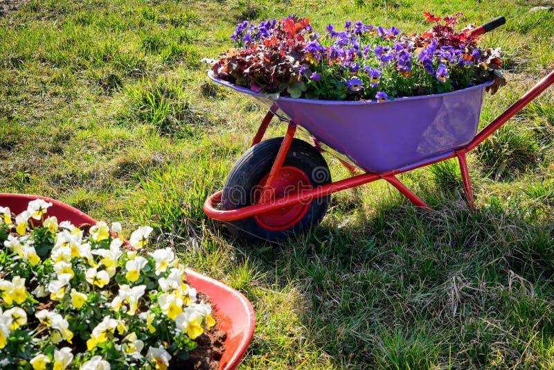 Fleurs dans un vieux chariot images libres de droits