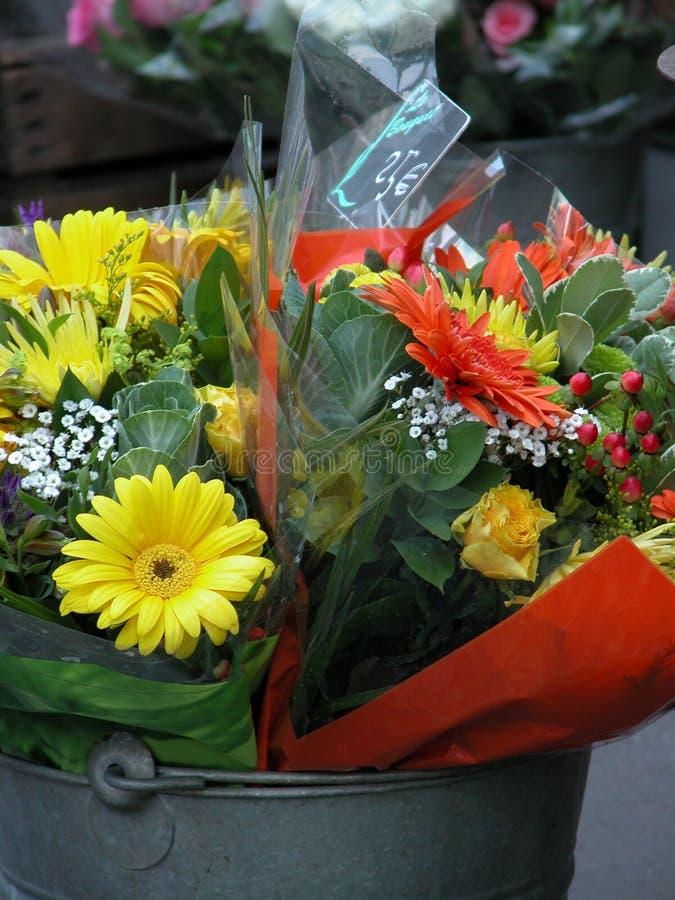 Fleurs dans une position. image libre de droits