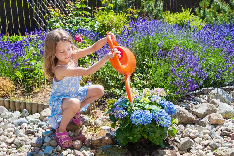 Fleurs de arrosage de petite fille dans un jardin images libres de droits