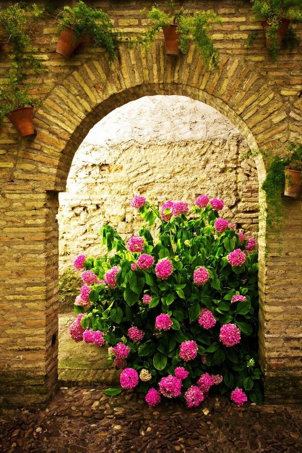fleurs de buisson image libre de droits