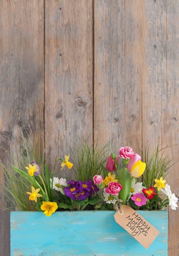 Fleurs de cadeau de jour de mères photos libres de droits