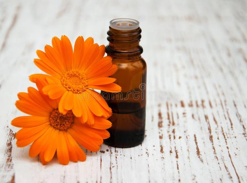 Fleurs de Calendula et pétrole de massage photos stock