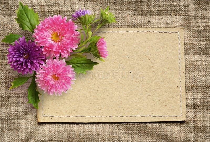 Fleurs de carte de papier et d'aster photographie stock