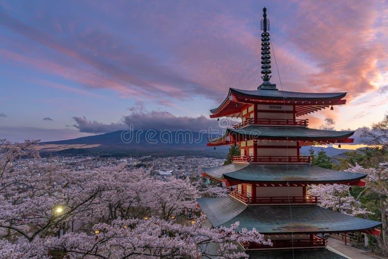 Fleurs de cerise au Japon photo stock