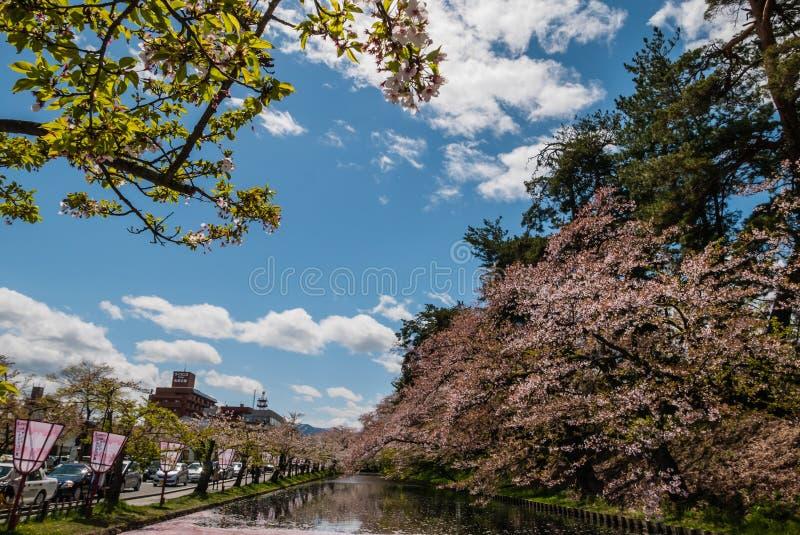 Download Fleurs De Cerisier Au Parc De Château De Hirosaki Photo éditorial - Image du étang, historique: 76088056