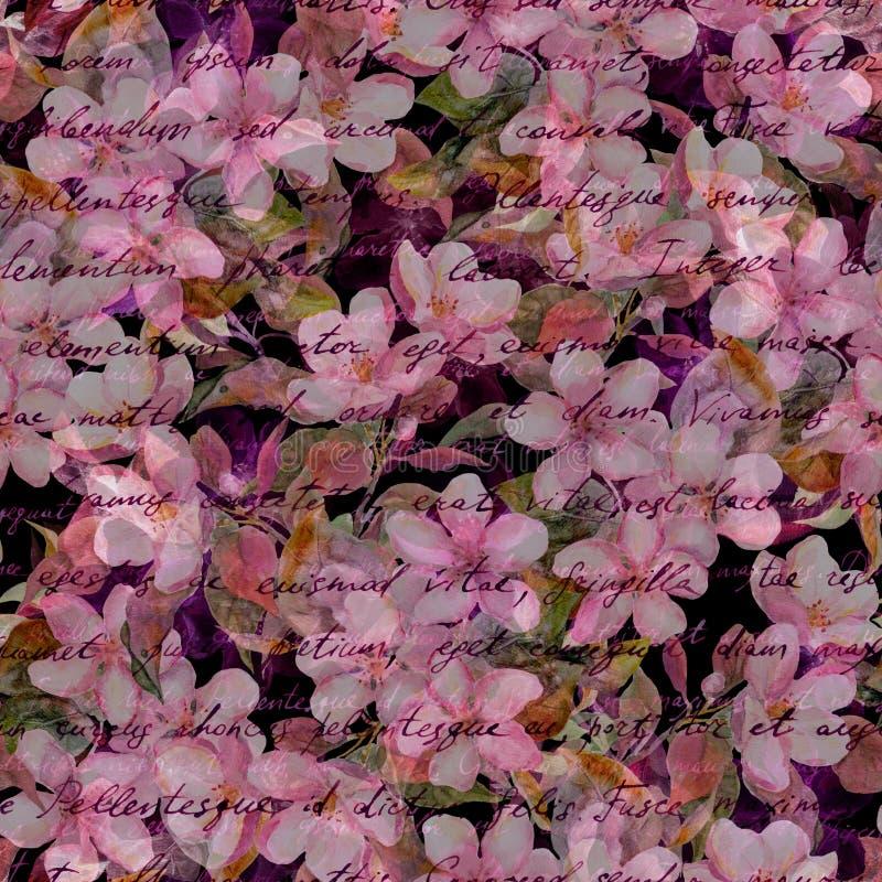 Fleurs de cerisier, fleurs roses, texte écrit de main Fond noir Modèle sans couture mystérieux image libre de droits