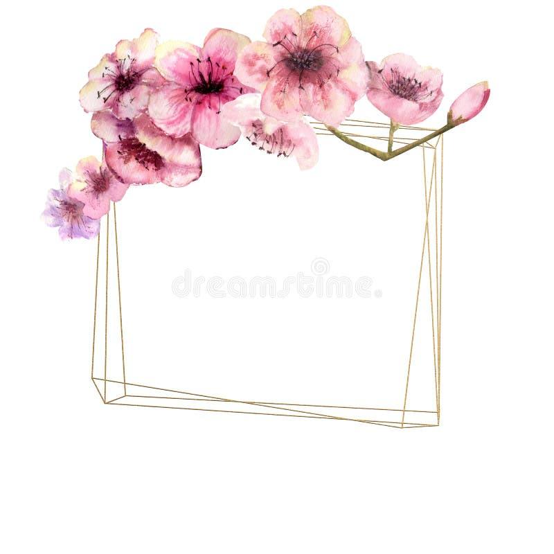 Fleurs de cerisier, Sakura Branch avec les fleurs roses sur le cadre d'or et le fond blanc d'isolement Image de ressort Vue water illustration de vecteur
