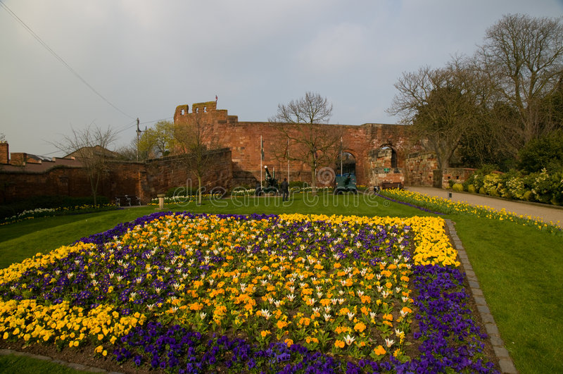 Download Fleurs de château photo stock. Image du angleterre, ressort - 8667016