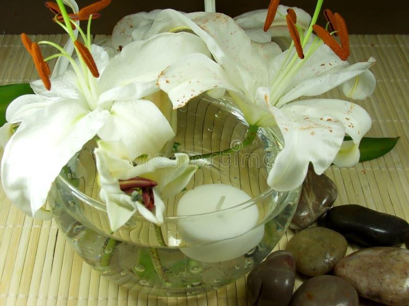 Fleurs de Feng images stock