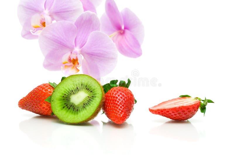 fleurs de fraises de kiwi et d 39 orchid e sur un fond blanc. Black Bedroom Furniture Sets. Home Design Ideas