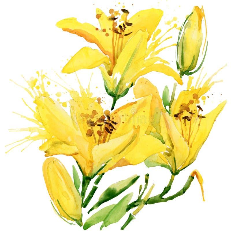 Fleurs de jardin d'été Illustration d'aquarelle illustration libre de droits