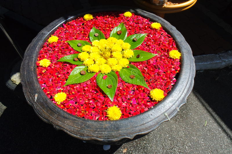 Fleurs de Kolam images stock