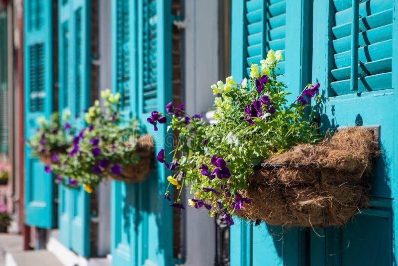 Fleurs de la Nouvelle-Orléans photos stock