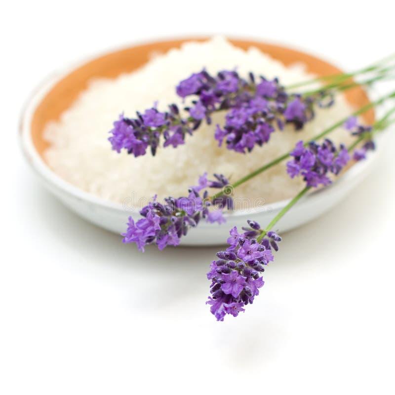 Fleurs de lavande et sel de bain photo stock