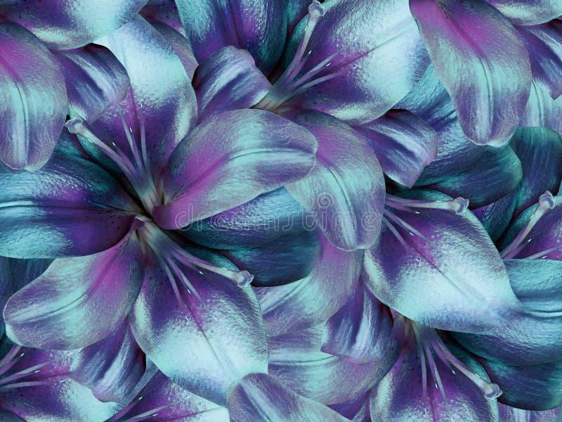 Fleurs de lis fond turquoise-pourpre lumineux collage floral Composition de fleur image stock
