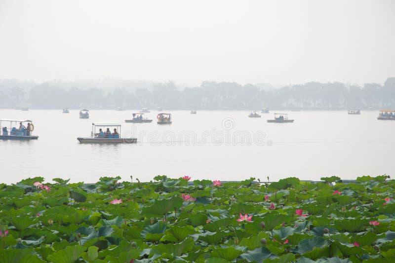 Fleurs de Lotus et lac flou avec des bateaux photographie stock