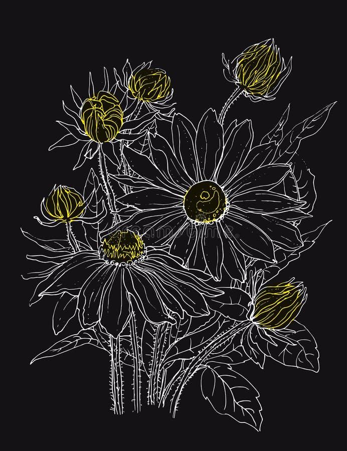 Fleurs de marguerite dans le bouquet illustration de vecteur