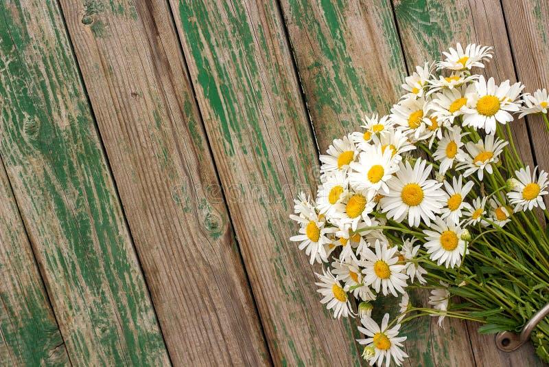 Fleurs de marguerites de camomille de champ de bouquet dans la poignée de porte sur le vieux fond en bois Surprise romantique rus image stock