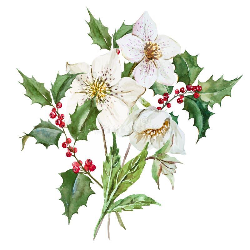 Fleurs de Noël d'aquarelle illustration de vecteur