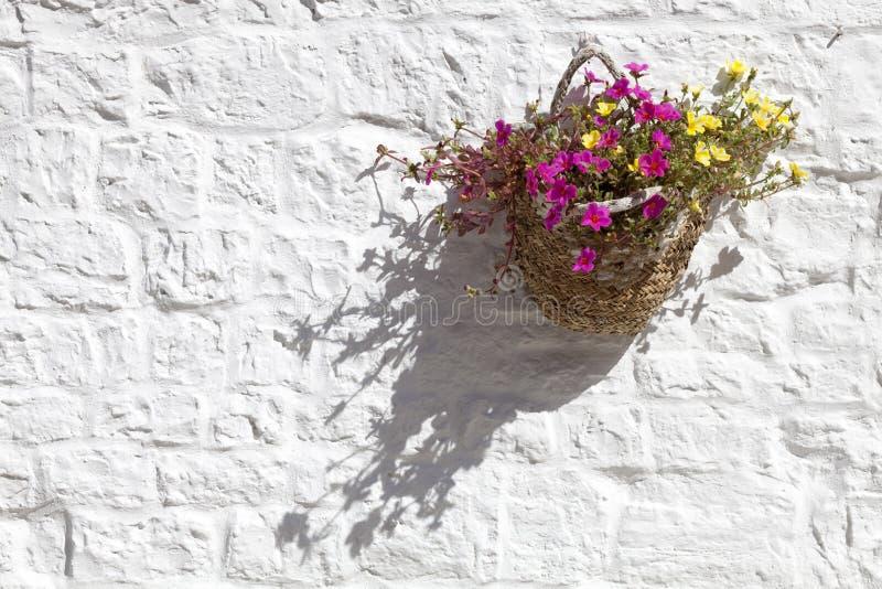 Fleurs de panier accrochant sur le mur blanc photo stock
