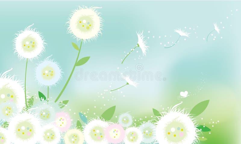 Fleurs de pissenlit illustration stock