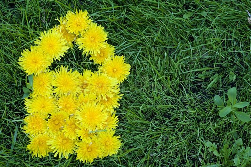 Fleurs de pissenlit sous la forme de la Chambre photographie stock libre de droits