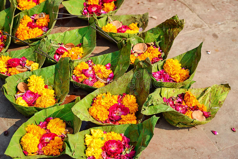 Fleurs de Puja pour le rituel d'aarti, Inde photos libres de droits