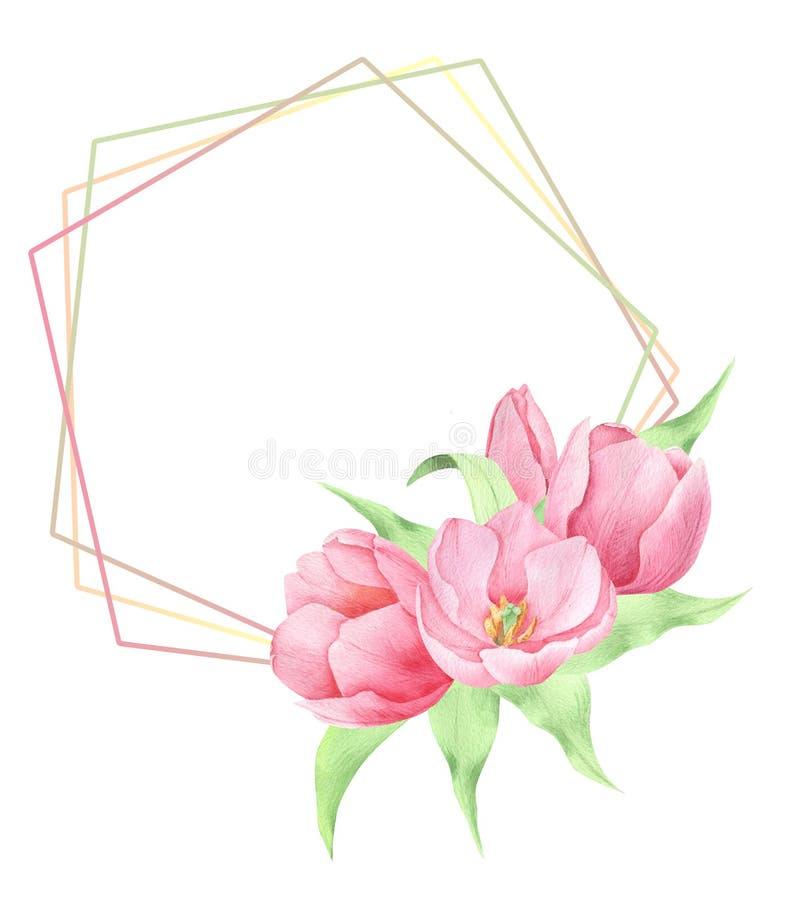 Fleurs de ressort d'aquarelle photos libres de droits