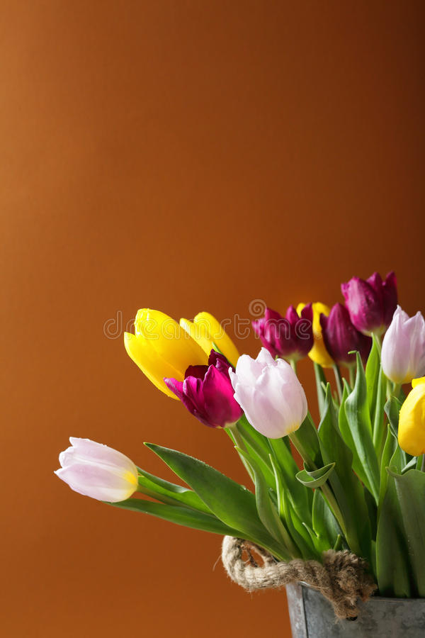 Fleurs de ressort dans le seau photo libre de droits
