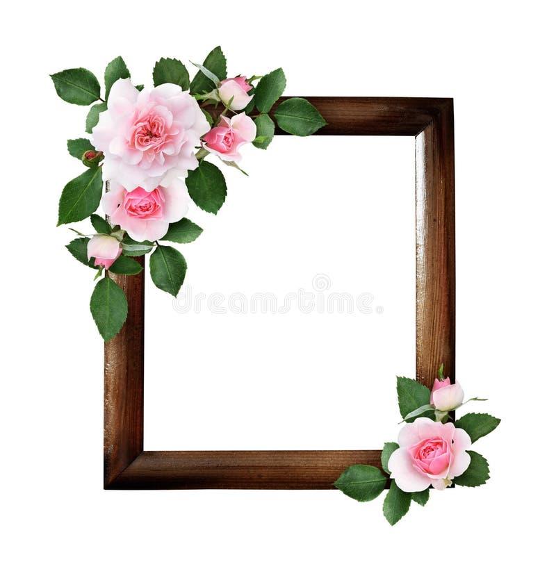 Fleurs de rose de rose et feuilles de vert dans arrangemen floraux faisants le coin illustration stock