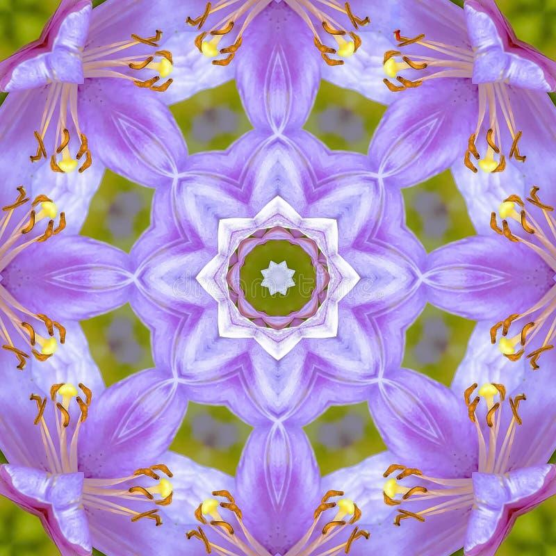 Fleurs de rose de place avec la vue circulaire de conception de fractale images stock