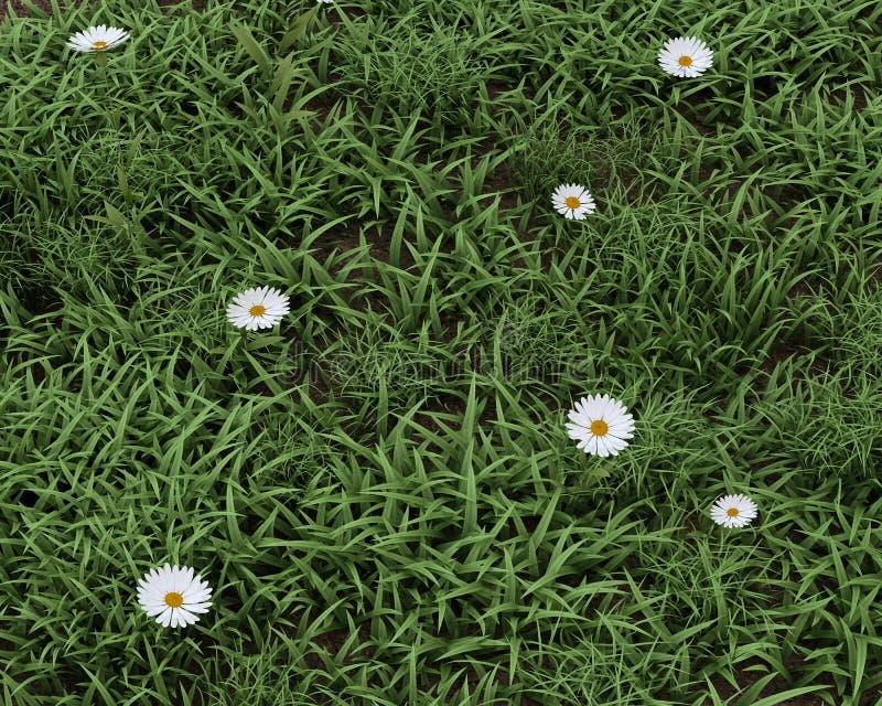 Fleurs de source en fleur illustration libre de droits