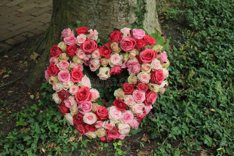 Fleurs de sympathie près d'un arbre photographie stock libre de droits