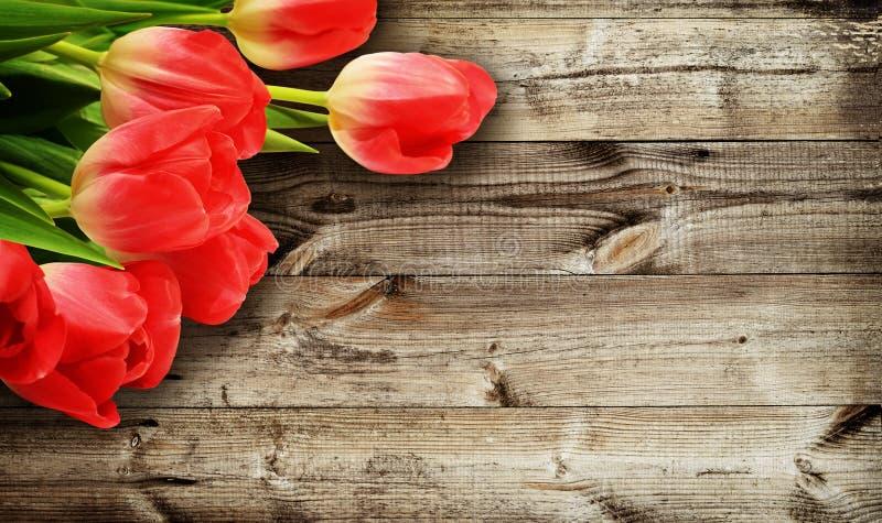 Fleurs de tulipe sur le fond en bois foncé photographie stock