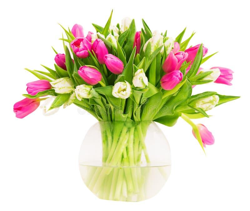 Fleurs de tulipes dans le vase en verre d'isolement au-dessus du fond blanc, image stock
