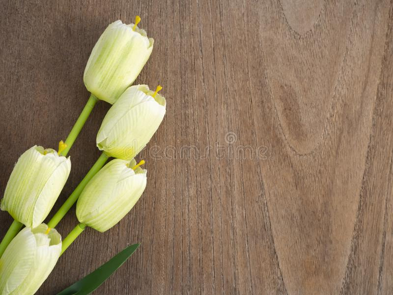 Fleurs de tulipes de ressort sur un vieil en bois photo stock