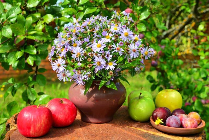 Fleurs du jardin et du fruit images stock