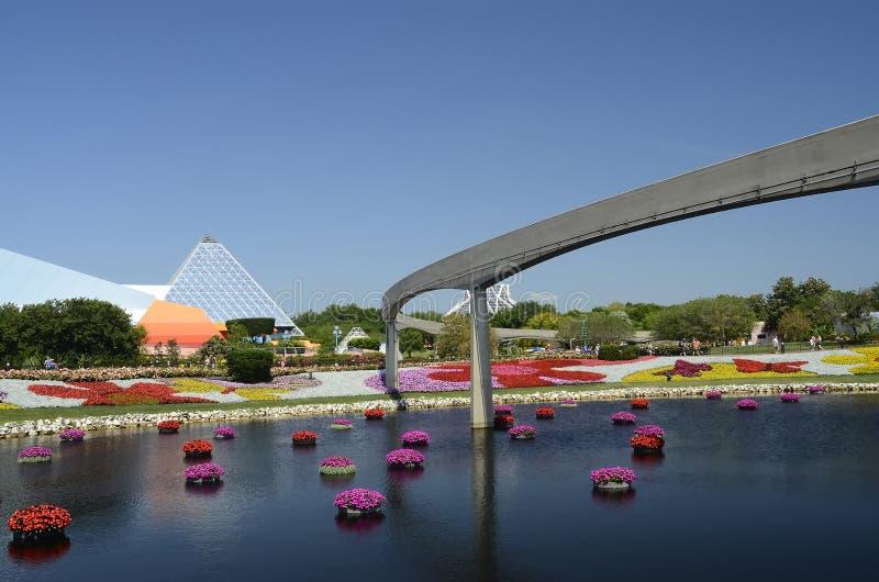 Fleurs du monde de Disney images libres de droits
