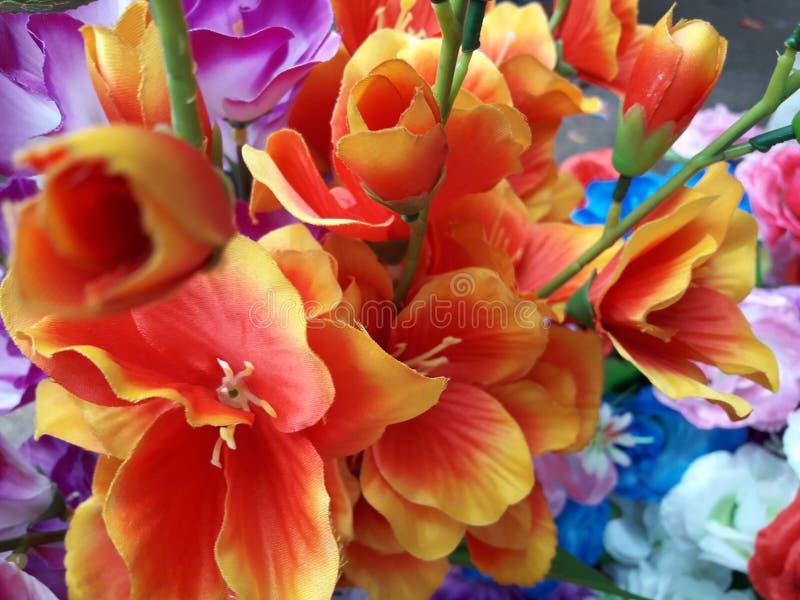 Fleurs en plastique jaunes merveilleuses d'un friver dans le jardin photos stock
