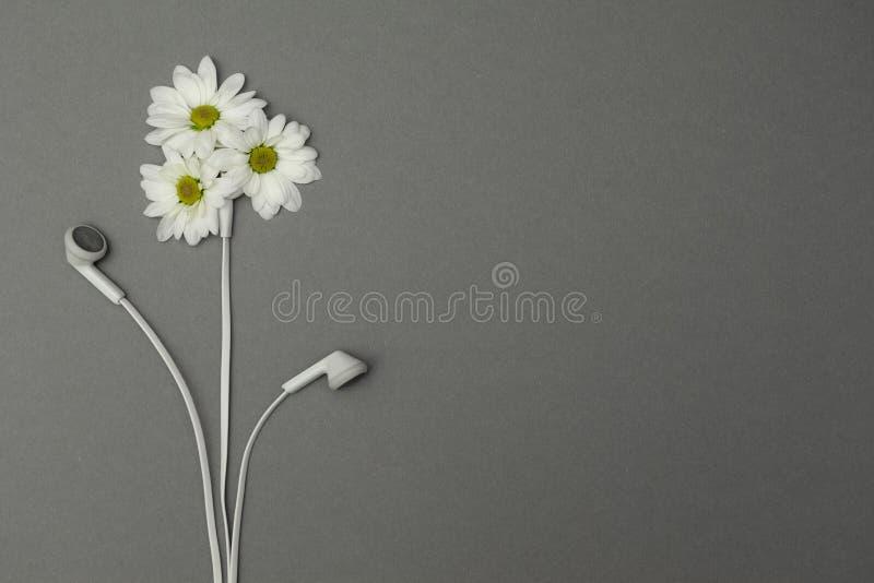 Fleurs et écouteurs, relaxation Concept images libres de droits