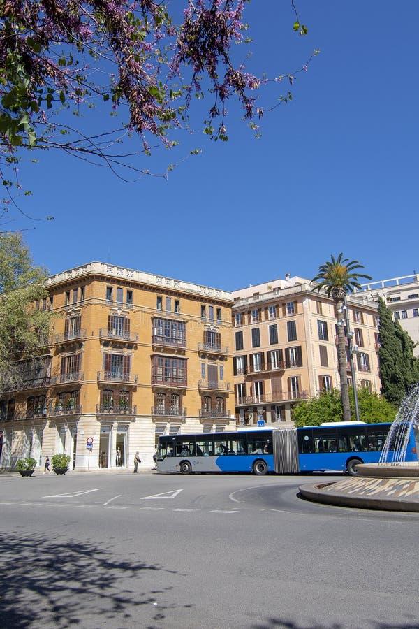 Fleurs et autobus roses de ressort sur Plaza de la Reina photos libres de droits