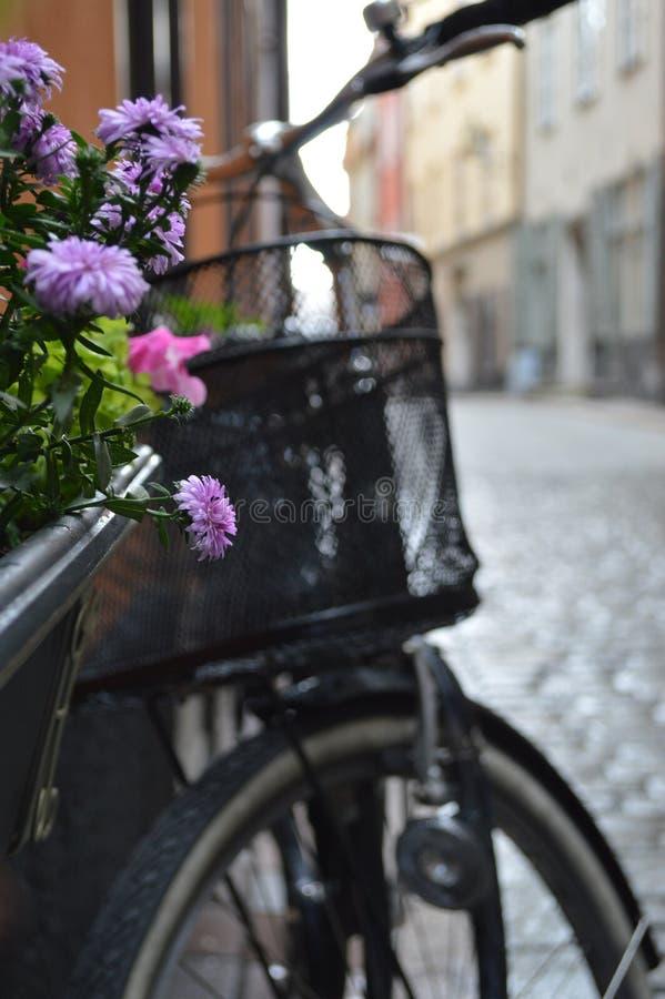 Fleurs et bicyclettes photos libres de droits