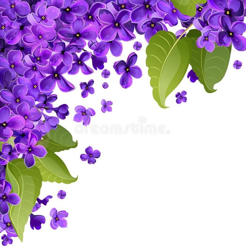 Fleurs et feuilles de lilas Fond abstrait pour le Ca de salutation photos libres de droits