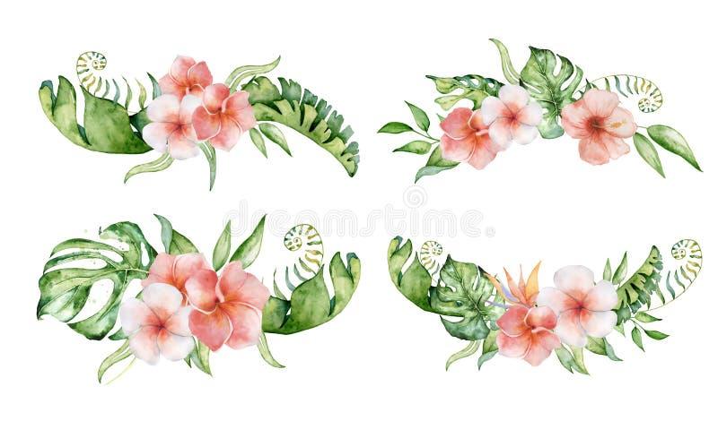 Fleurs et feuilles r?gl?es tropicales d'aquarelle Bouquet exotique d'isolement sur le fond blanc illustration stock