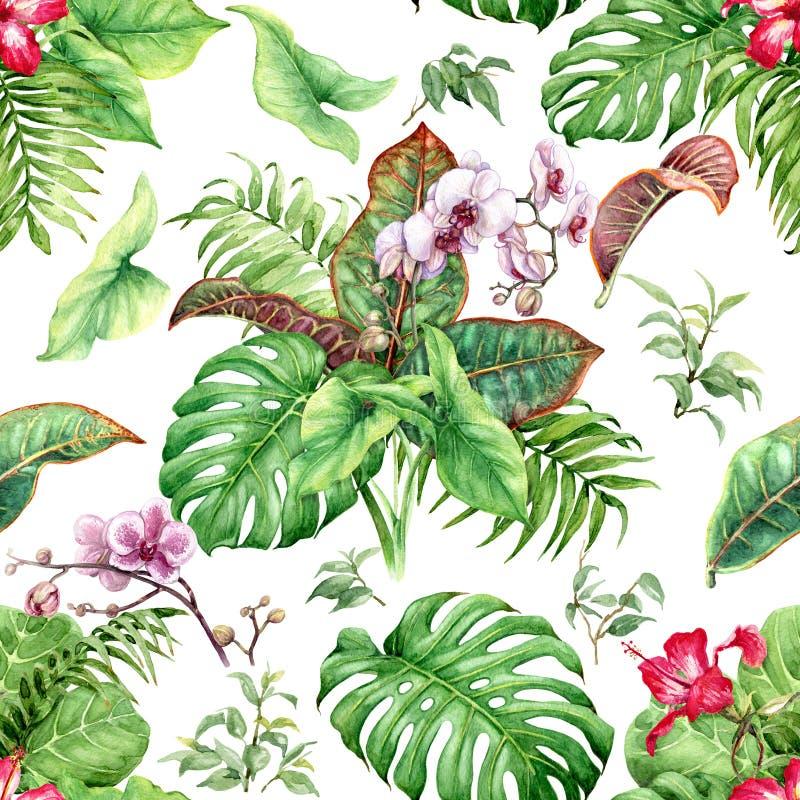 Fleurs et feuilles tirées par la main des plantes tropicales  illustration de vecteur