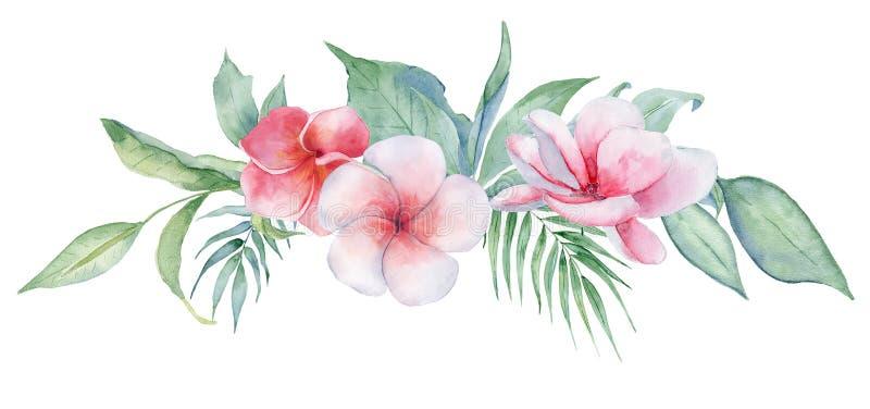 Fleurs et feuilles tropicales d'aquarelle Guirlande exotique d'isolement sur le fond blanc illustration de vecteur