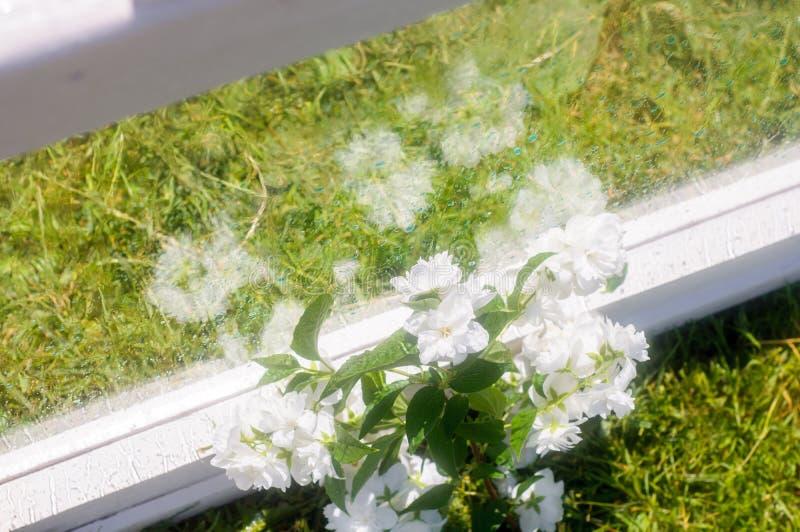 Fleurs et guirlandes l?g?res derri?re le verre humide Fen?tre moite Baisses de l'eau sur la glace Lumi?res brouill?es Surface tra image stock